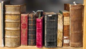 たくさん本を読む必要はない!自分に合った本の選び方とは?